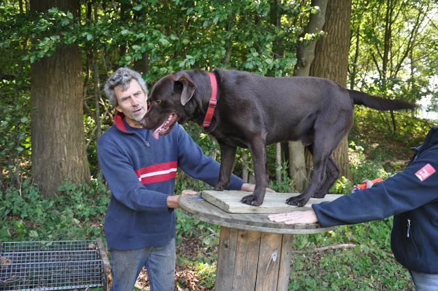 Survival voor Baas en Hond 2012 - DSC_0428.JPG