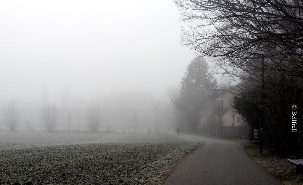 [Nebelweg%5B3%5D]