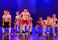 Han Balk Voorster Dansdag 2016-3151.jpg