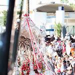 CaminandoalRocio2011_158.JPG