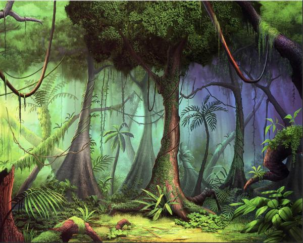 Hot Country Forest, Magical Landscapes 1