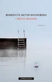 I beste mening, av Benedicte M. Kroneberg