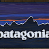 Patagonia Donates $1 Million To 'Defending Democracy,' Dana Loesch Fires Back. 'Patagonia Has 13 Factories In China'