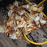 2010 Crab Feed - IMG_5588.JPG