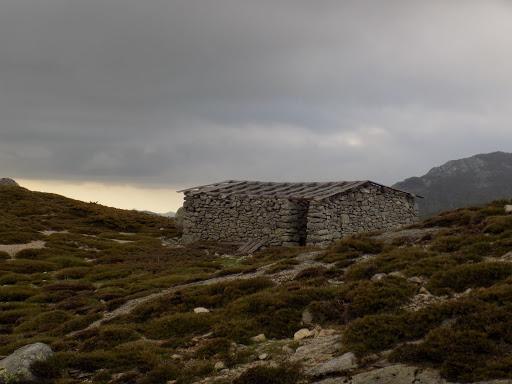 Alentours des bergeries de Carpicciola