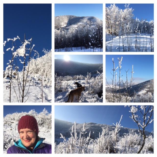 Jean winter collage