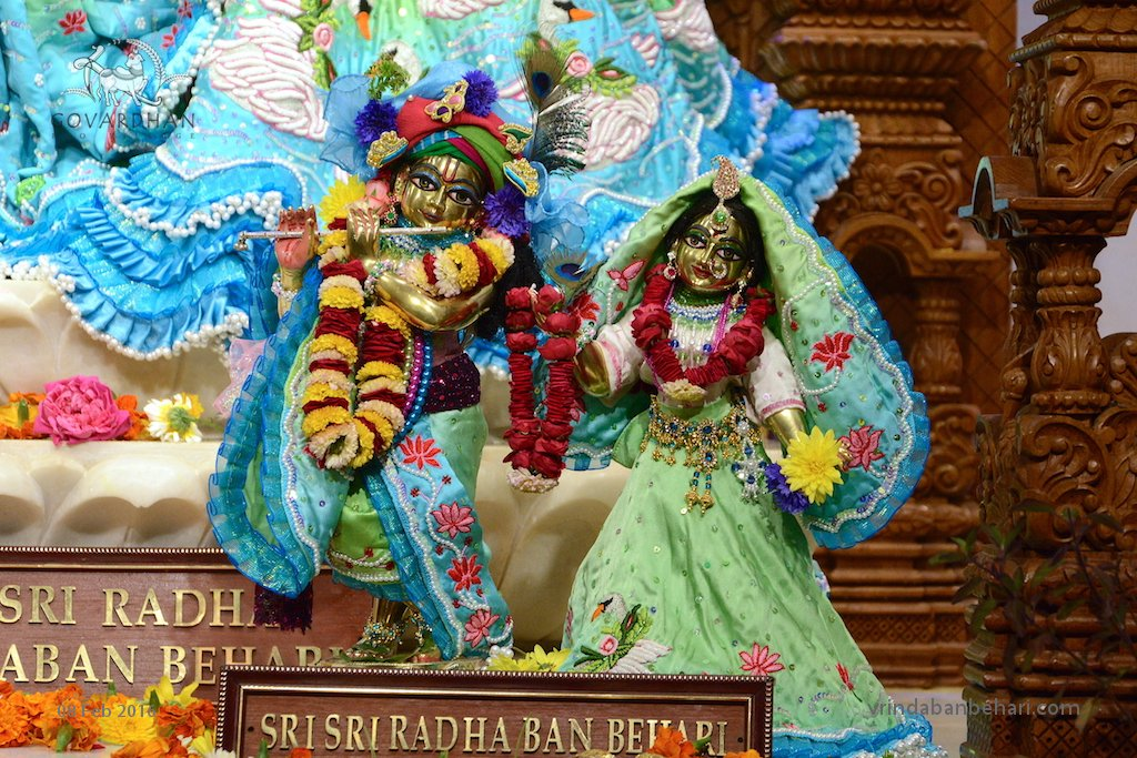 ISKCON GEV (Wada) Deity Darshan 08 Feb 2016 (3)