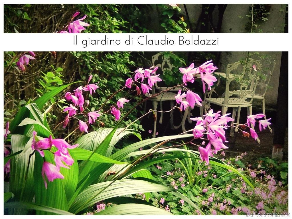 [Il+giardino+di+Claudio+%2810%29%5B3%5D]