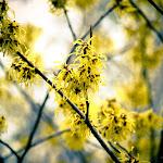 spring break (10 of 43).jpg
