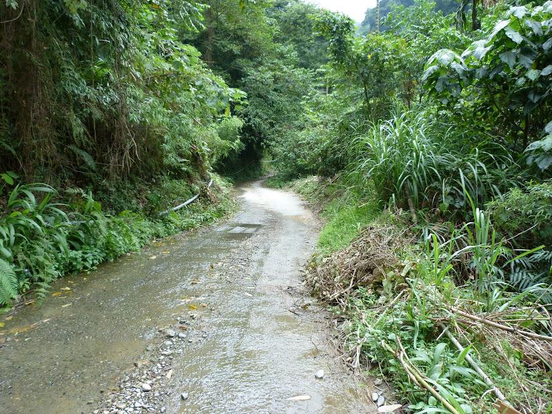 Puli  en passant , entre autres, par les villages de l ethnie Bunum de Loloko et Dili. J 10 - P1170133.JPG
