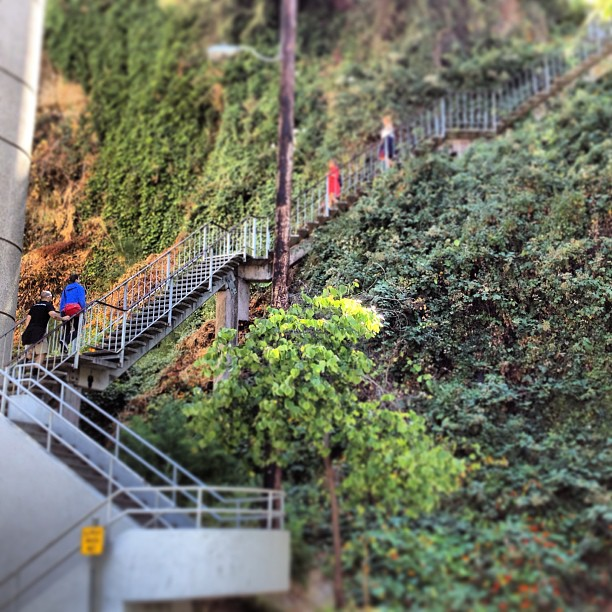 We're heading up the Filbert Street Steps.