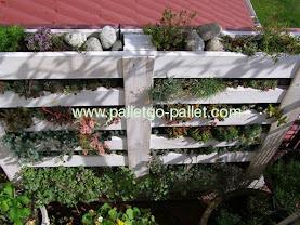 không phải chỉ có ngôi biệt thự nhà mỹ tâm dùng pallet gỗ làm vườn treo mà cả nhà nghệ sỹ hài Quốc Trượng cũng có giàn pallet gỗ như vậy
