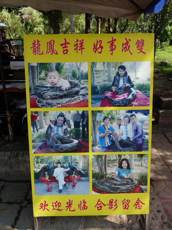 Chine . Yunnan..Galamba, Menglian Album A - Picture%2B227.jpg