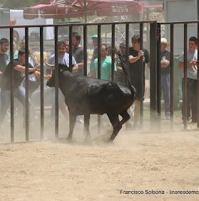 049-peña taurina linares 2014 149.JPG
