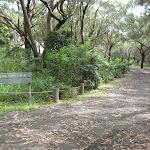 Road around Yagon campground