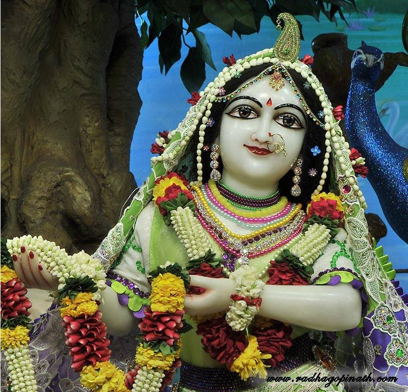 ISKCON Chowpatty Deity Darshan 08 April 2016 (2)