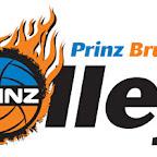 logo_prinzbrunnenbauvolleys.jpg
