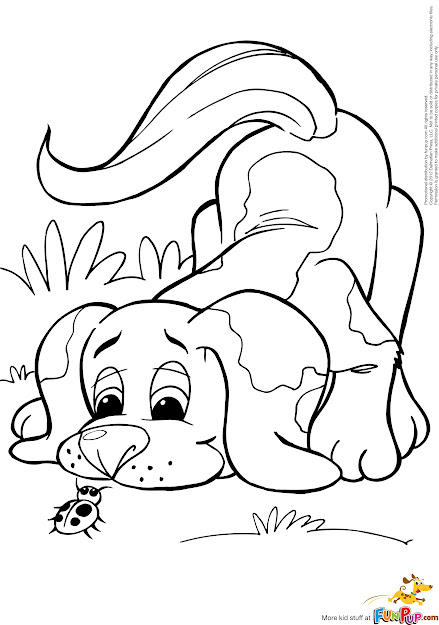 Imagergkl Realistic Golden Retriever Coloring Pages Asp