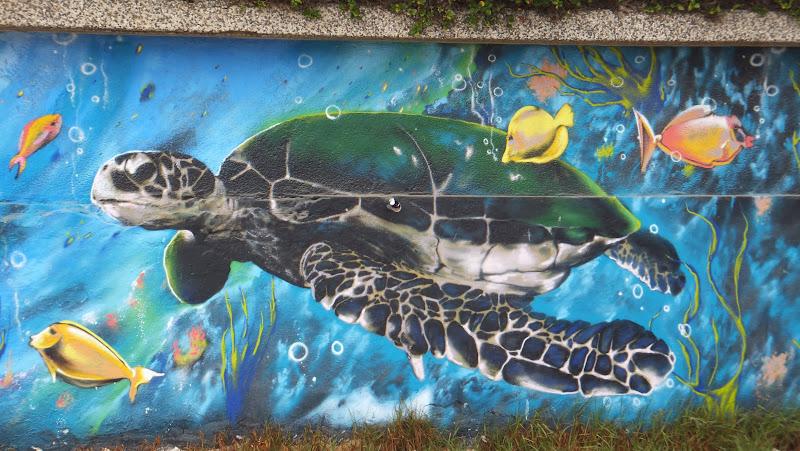 Street Art, Arte Callejero, Viña del Mar, Chile, Elisa N, Blog de Viajes, Lifestyle, Travel