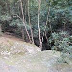 Rock with creek beyond near Watagan Forest Rd (65570)