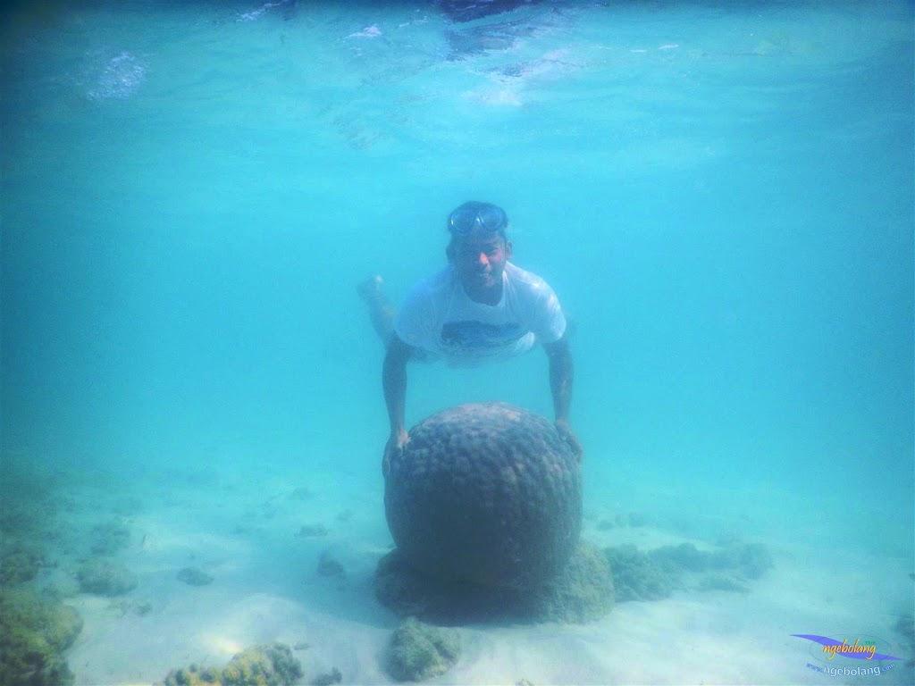 pulau pari, 23-24 mei 2015 44