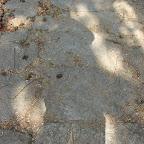 Mi sombra en Pueblito