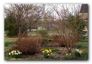работы в саду марте