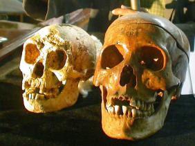 L'Homo sapiens présent dans le sud tunisien il y a près de 100.000 ans