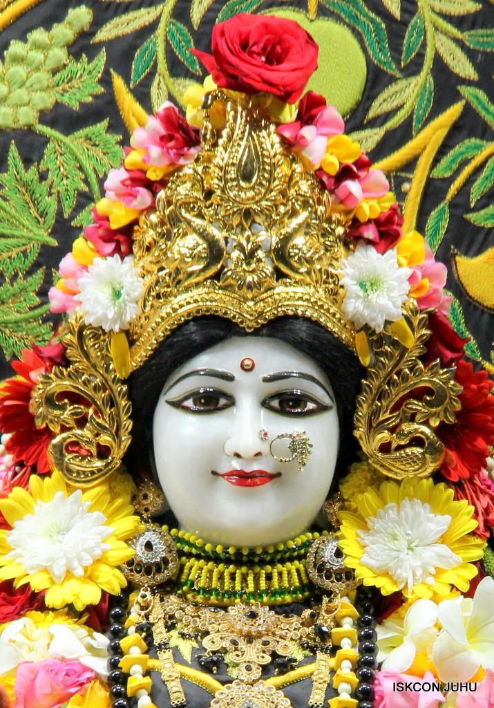 ISKCON Juhu Sringar Deity Darshan on 19th Nov 2016 (8)