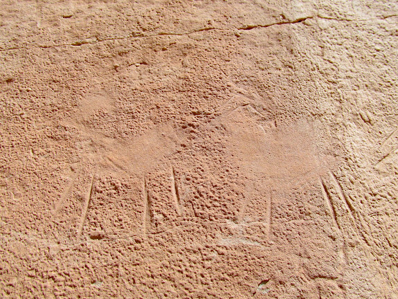 Unusual abraded and incised sheep glyphs