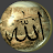 TheShuieb1 avatar image