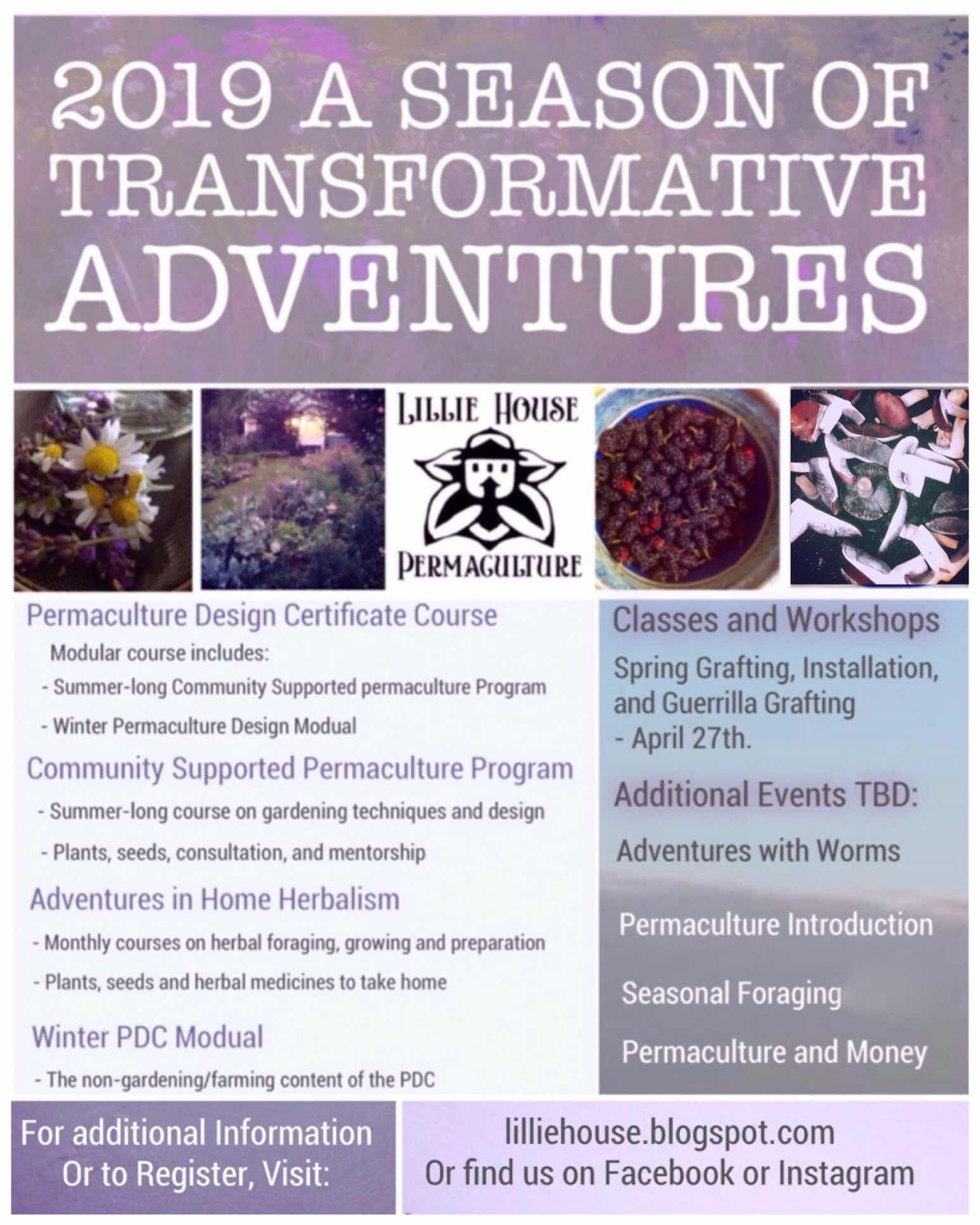 Transformative Adventures: Foraging, gardening, natural farming, Permaculture