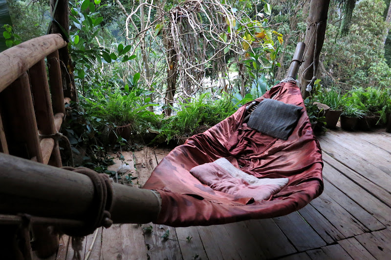 Cave Lodge hammock