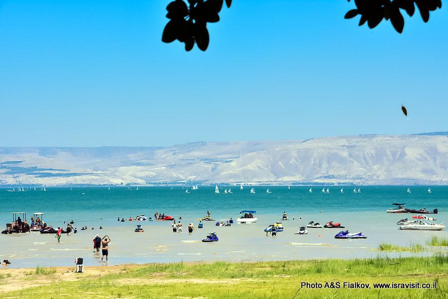 Отдых на озере Кинерет. Гид в Израиле Светлана Фиалкова.