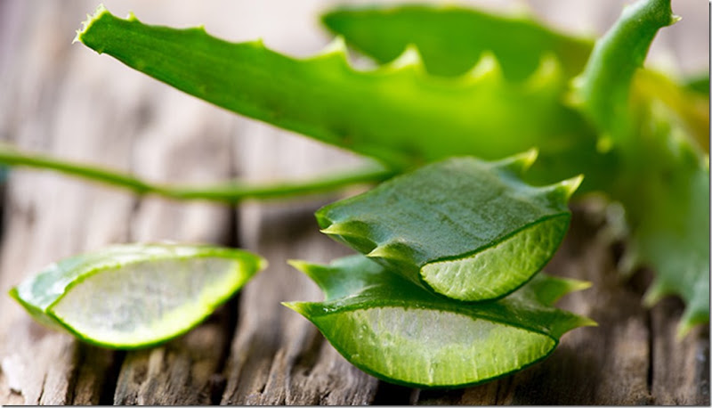 10.-Aloe-Vera-For-Puffy-Eyes