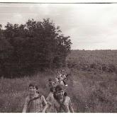n010-029-1966-tabor-sikfokut.jpg