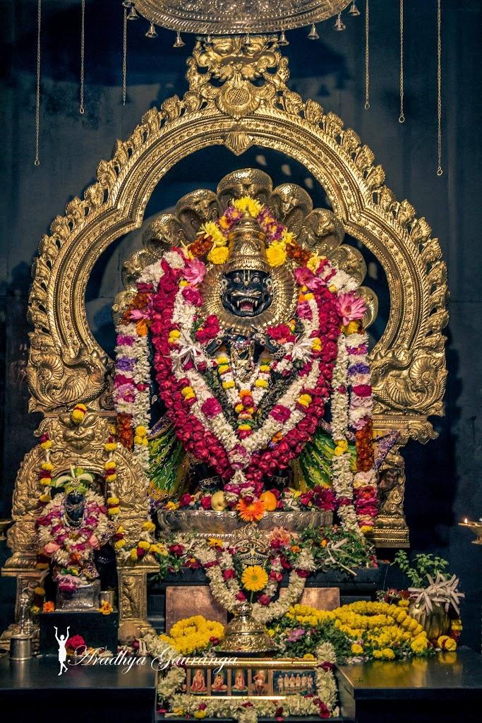 ISKCON Mayapur Deity Darshan 31 Dec 2016 (23)