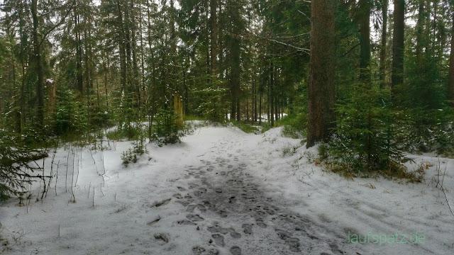 Kleiner Kranichsee nasser Schnee