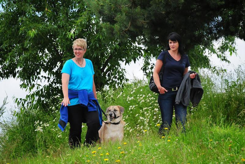 20130623 Erlebnisgruppe in Steinberger See (von Uwe Look) - DSC_3811.JPG