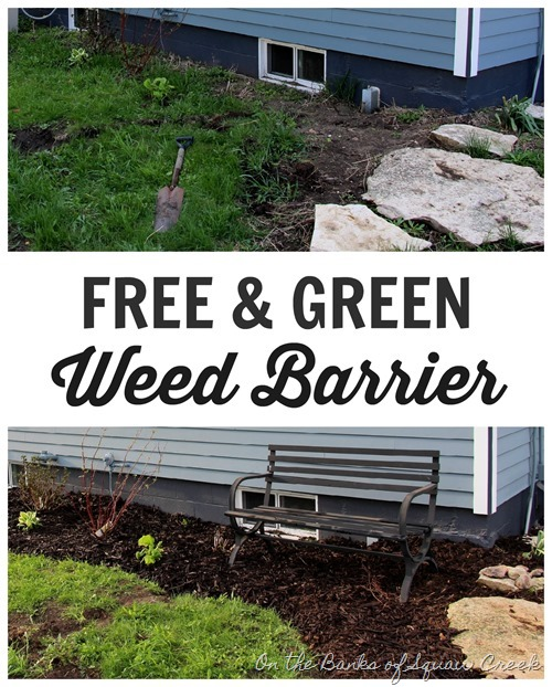 free & green weed barrier