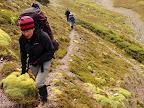 Sendero de Guanaco Cruce de Tierra del Fuego Trekking Desde Estancia Carmen al Lago Fagnano, y desde la Sierra Valdivieso al Canal Beagle! 7 dias de Trekking intenso.