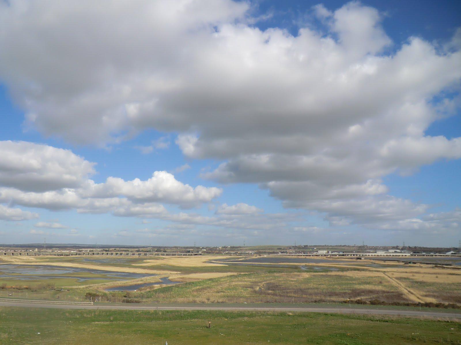 CIMG9952 Rainham Marshes