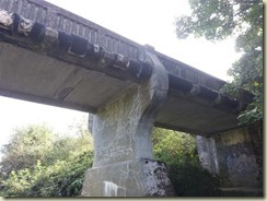 20160918_ Grosvenor Bridge (Small)