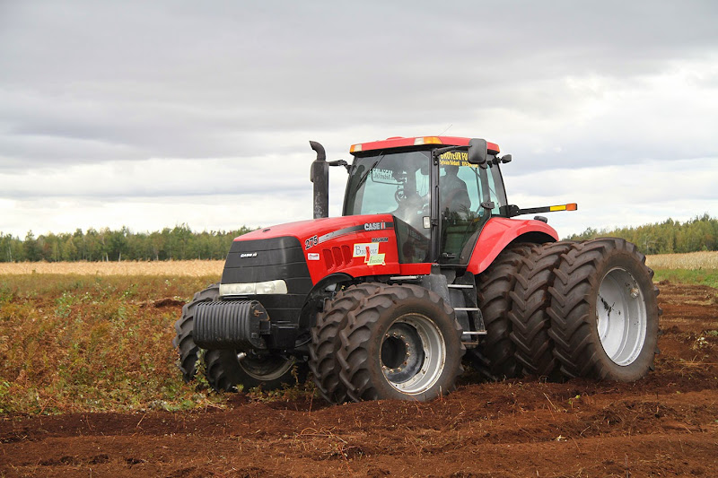 Transformation branchailles en terre agricole - Transformation-de-branchailles-en-terre-agricole-5.jpg