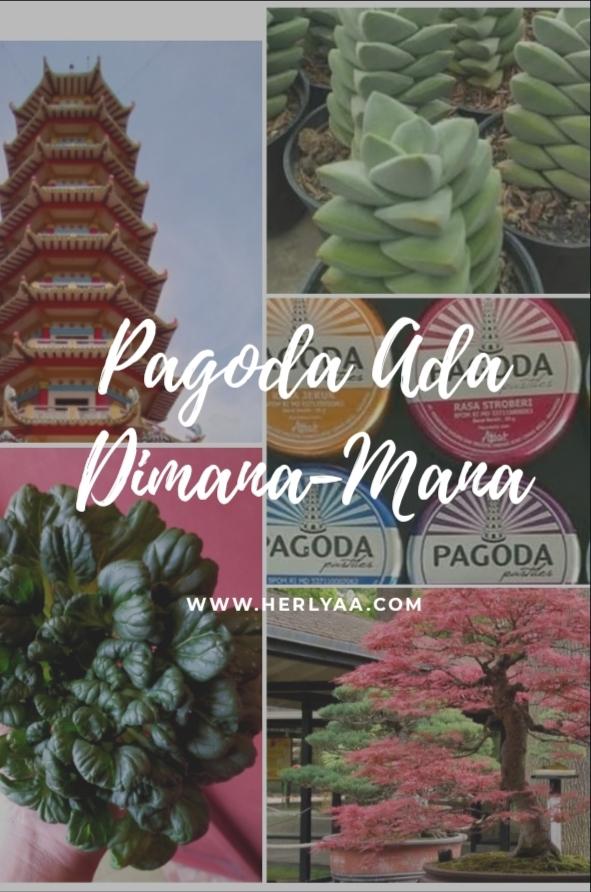 Ada Pagoda Dimana-Mana!