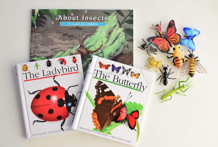 BOOKS ABOUT INSECTS