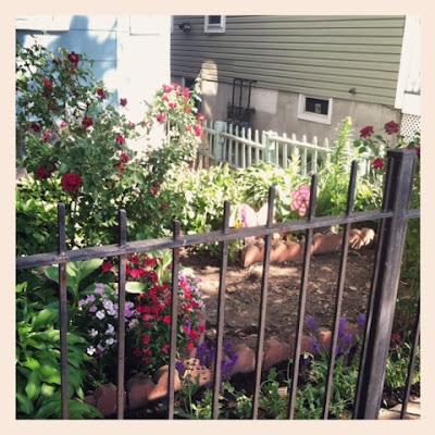 postage stamp little urban garden