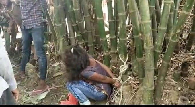 दर्दनाक : समस्तीपुर में प्रेमी युगल की बांस में बांधकर पिटाई, आपत्तिजनक हालत में पकड़े गए थे दोनों