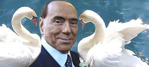 Il canto cigno Silvio