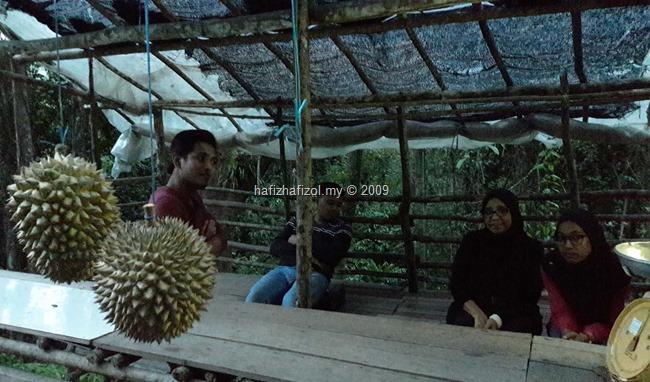 buah durian sodap